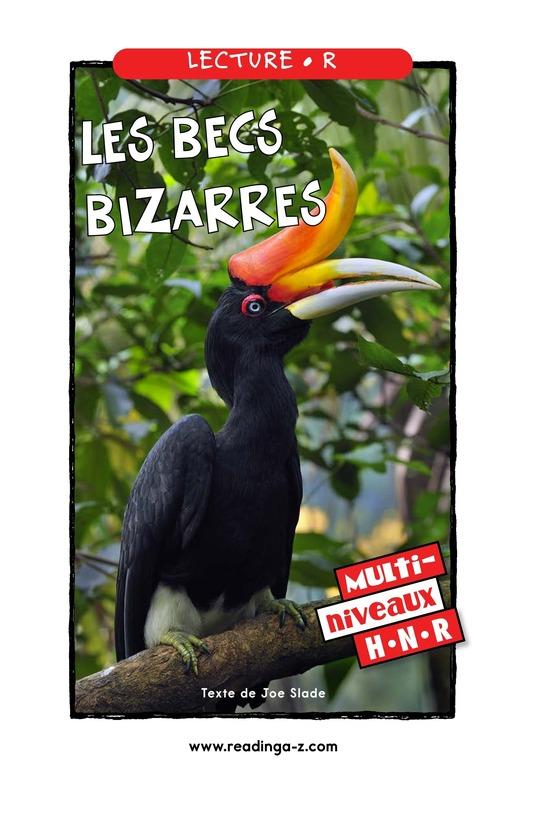 Book Preview For Weird Bird Beaks Page 1