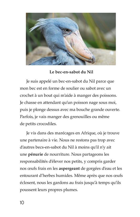 Book Preview For Weird Bird Beaks Page 10