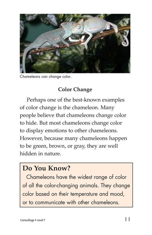 Book Preview For Camouflage Page 11