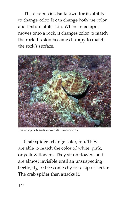 Book Preview For Camouflage Page 12