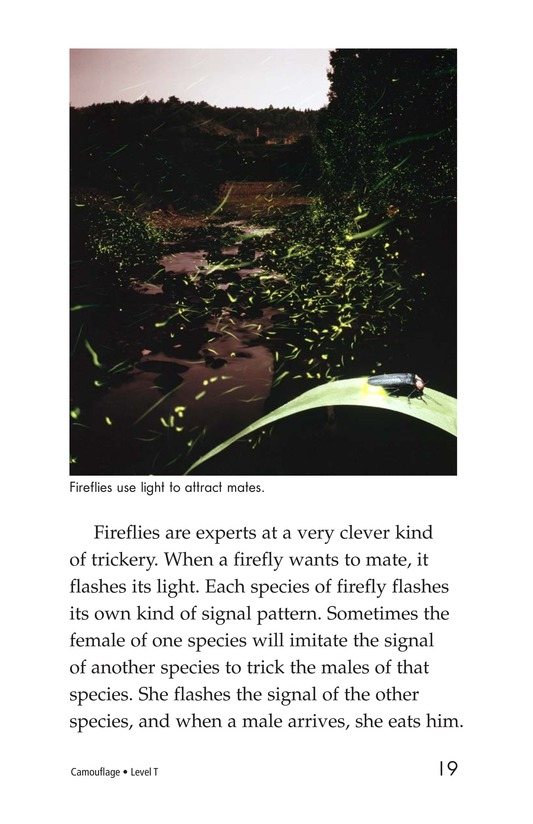Book Preview For Camouflage Page 19