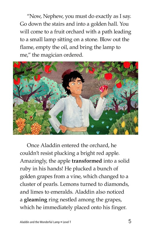 Book Preview For Aladdin and the Wonderful Lamp Page 5
