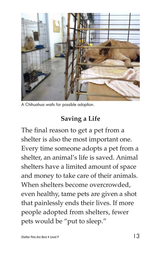 Book Preview For Shelter Pets Are Best Page 13