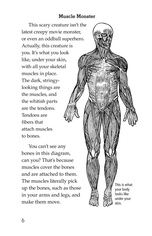 Book Preview For Get Moving! All About Muscles Page 6