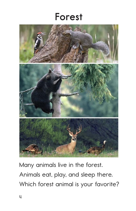 Book Preview For Animals Page 4