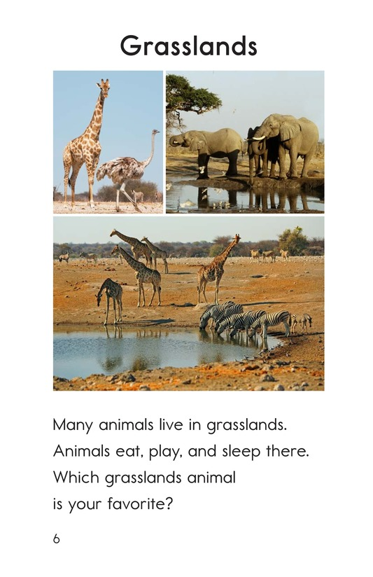 Book Preview For Animals Page 6