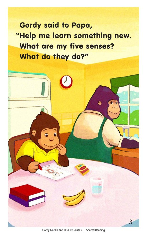 Book Preview For Gordy Gorilla and His Five Senses Page 3