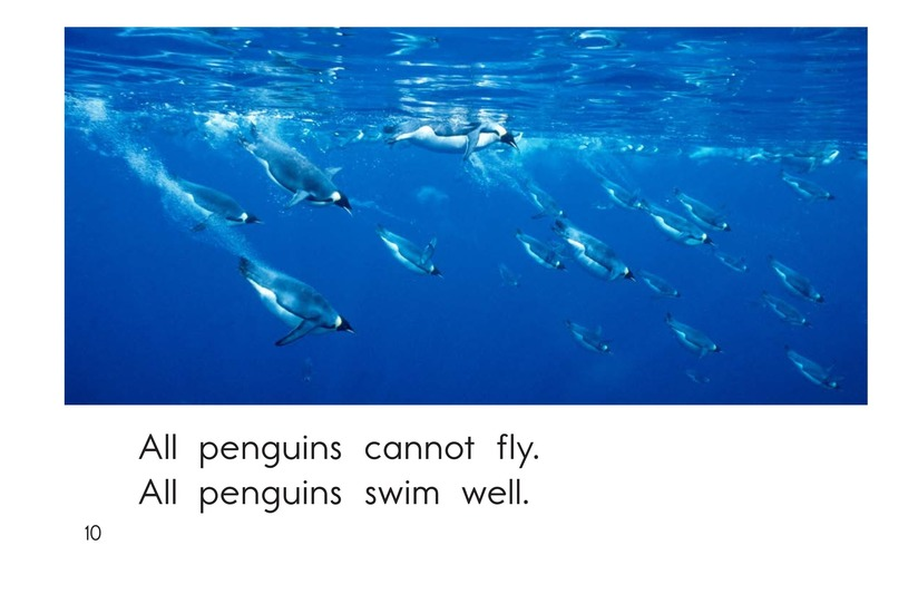 Book Preview For All About Penguins Page 10