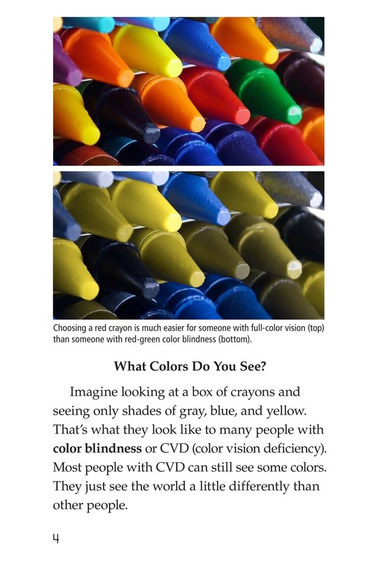 Book Preview For Color Blindness Page 4
