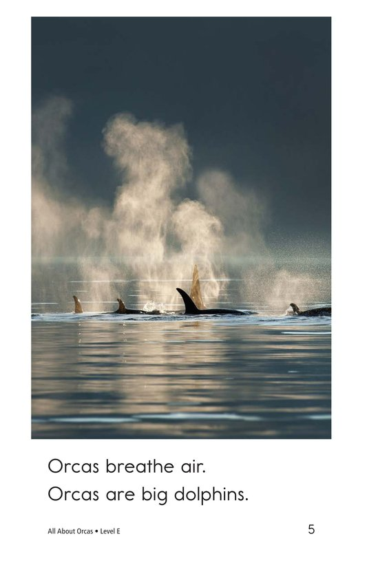 Book Preview For All About Orcas Page 5
