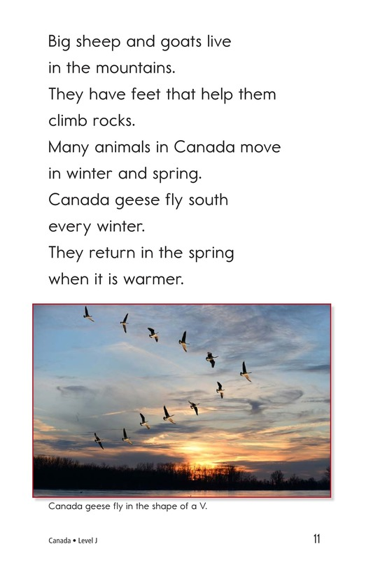 Book Preview For Canada Page 11
