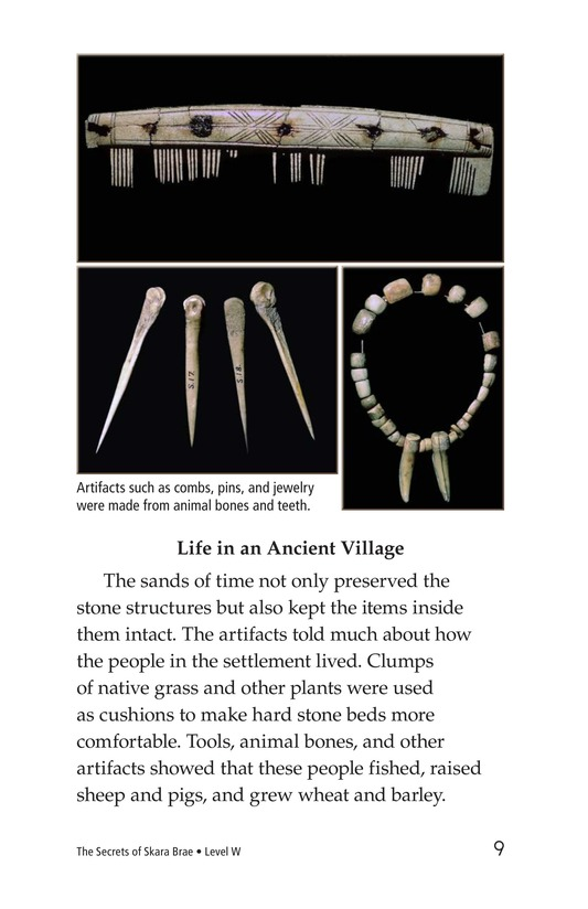Book Preview For The Secrets of Skara Brae Page 9