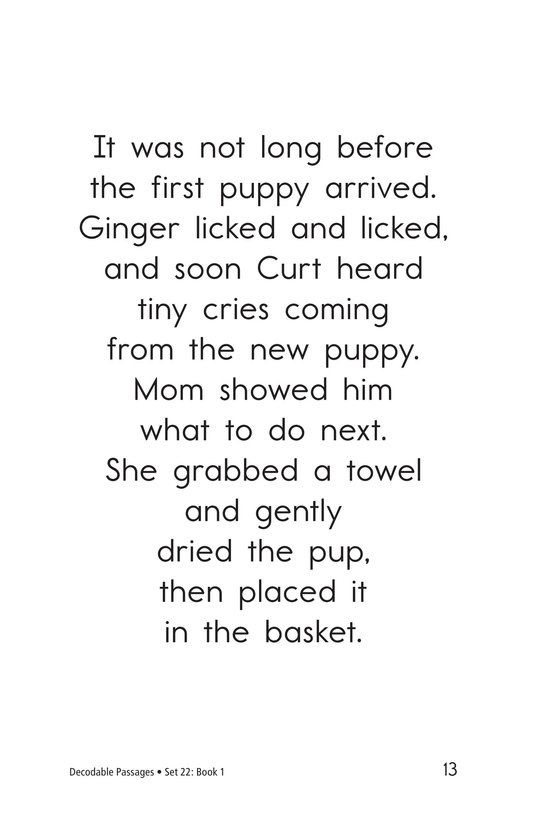 Book Preview For Decodable Passages Set 22 Book 1 Page 13