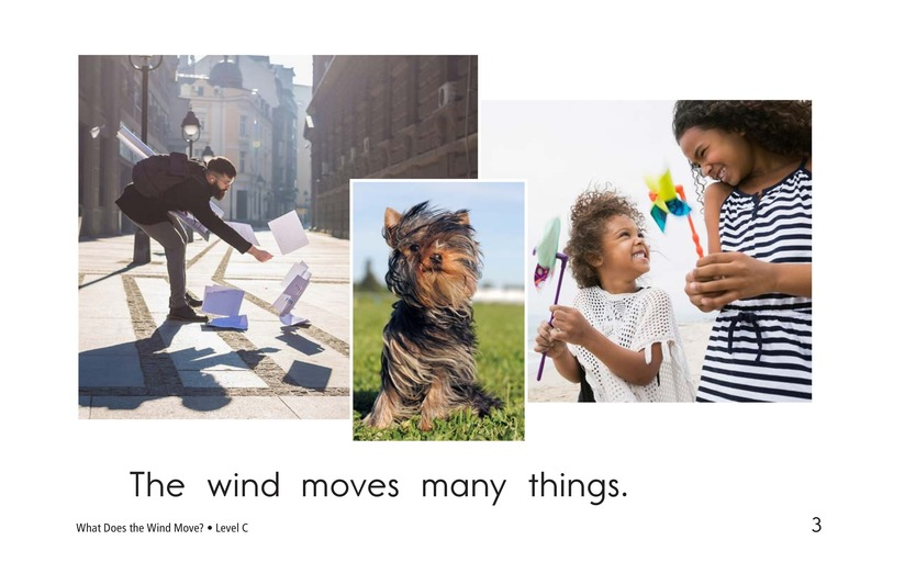 Book Preview For What Does the Wind Move? Page 3