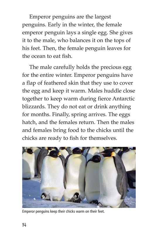 Book Preview For Polar Regions of the Earth Page 14