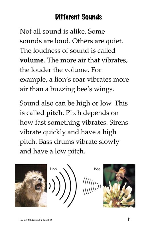 Book Preview For Sound All Around Page 11