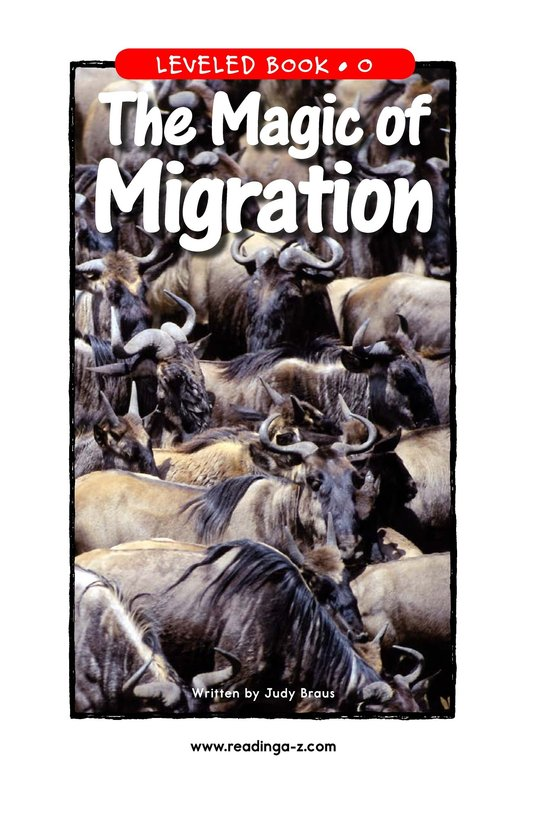 Book Preview For The Magic of Migration Page 1