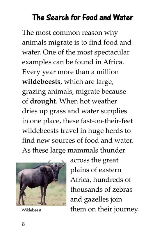 Book Preview For The Magic of Migration Page 8